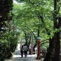 城崎温泉の木屋町通り