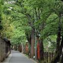 木屋町通り(三木屋裏)
