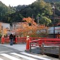 薬師橋と紅葉