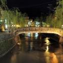 柳の新芽と愛宕橋の夜景