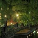 桃島橋から北東方面の眺め