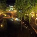 夜の大谷川と柳並木