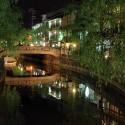 柳湯橋と柳並木