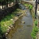 温泉寺入り口付近の大谿川