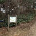 大師山山頂への道 その4