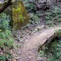 大師山山頂への道 その1