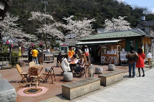 http://photo.kinosaki2.net/sakura/1882.html