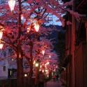 木屋町通りの夜桜 その17
