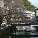 木屋町通りと大谿川