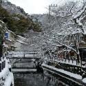 桜並木の雪景色