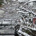 桜橋からの雪景色