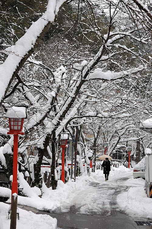http://photo.kinosaki2.net/snow/877.html