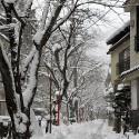 雪の木屋町通り