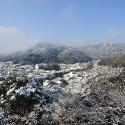城崎温泉を一望できる東山公園