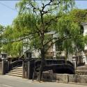 柳と柳湯橋
